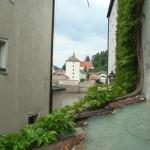 Blick ueber die Gartenmauer