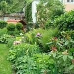 Garten_12