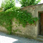 Gartenmauer Ort 15